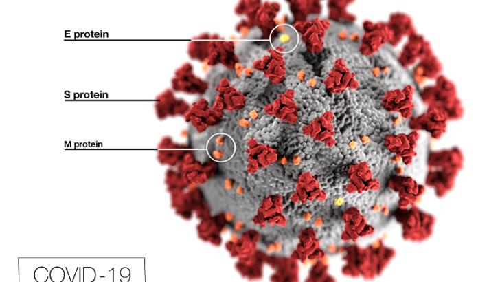 City of Stamford updates on coronavirus situation 05/20/2020